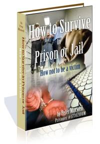 How To Survive in Prison